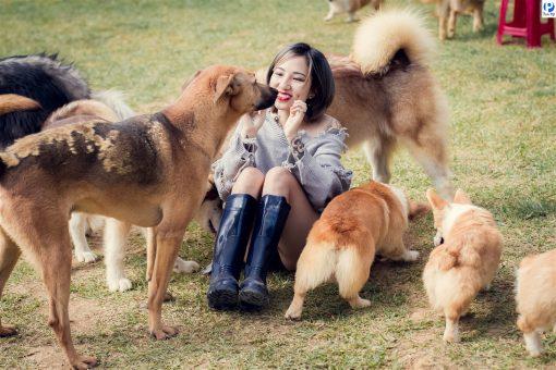 Nông trại cún Puppy farm dễ thương, thân thiện tại Đà Lạt