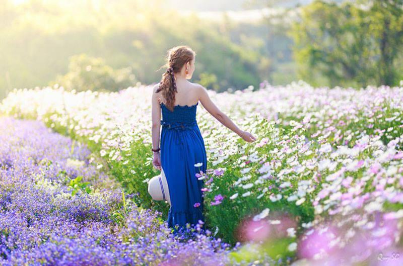 Những vạt hoa rực rỡ tại F cánh đồng hoa Đà Lạt tour check in đà lạt những địa điểm hot nhất 2020