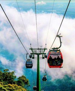 Tuyến cáp treo dài nhất Đà Lạt với những cabin đầy màu sắc sẽ là nơi bạn nhìn ngắm rừng thông xanh ngát.