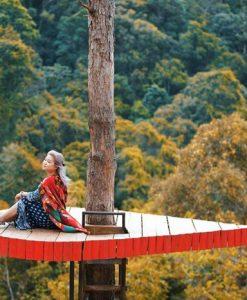 Cây cô đơn tại Hoa sơn điền trang Đà Lat là nơi bạn tạo cho mình những bức hình ảo diệu.