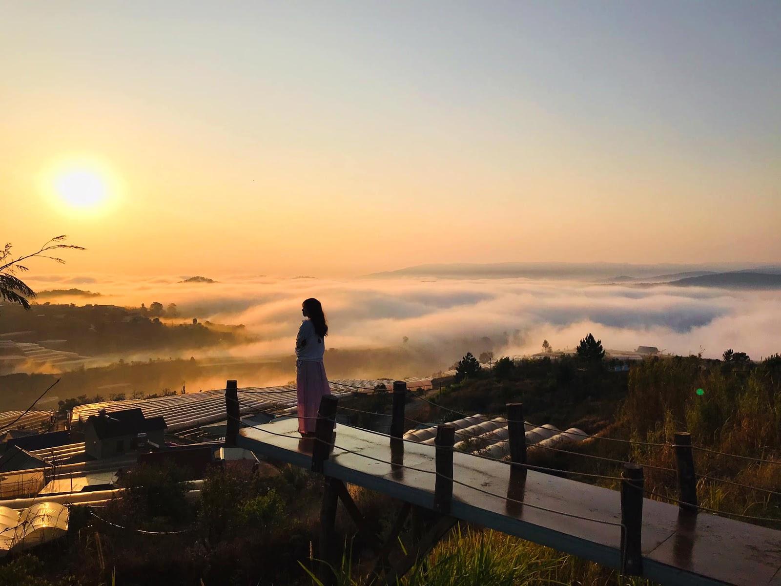 Tour Đà Lạt 3 ngày 2 đêm check in những địa điểm du lịch đẹp nhất 2020