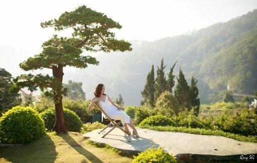 Góc chụp hình thần thánh với Bonsai cô đơn tại Quê garden.