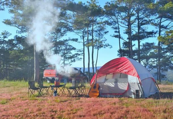 Cắm trại tại Zoodoo Đà Lạt sẽ là 1 trong những trải nghiệm tuyệt vời của bạn.