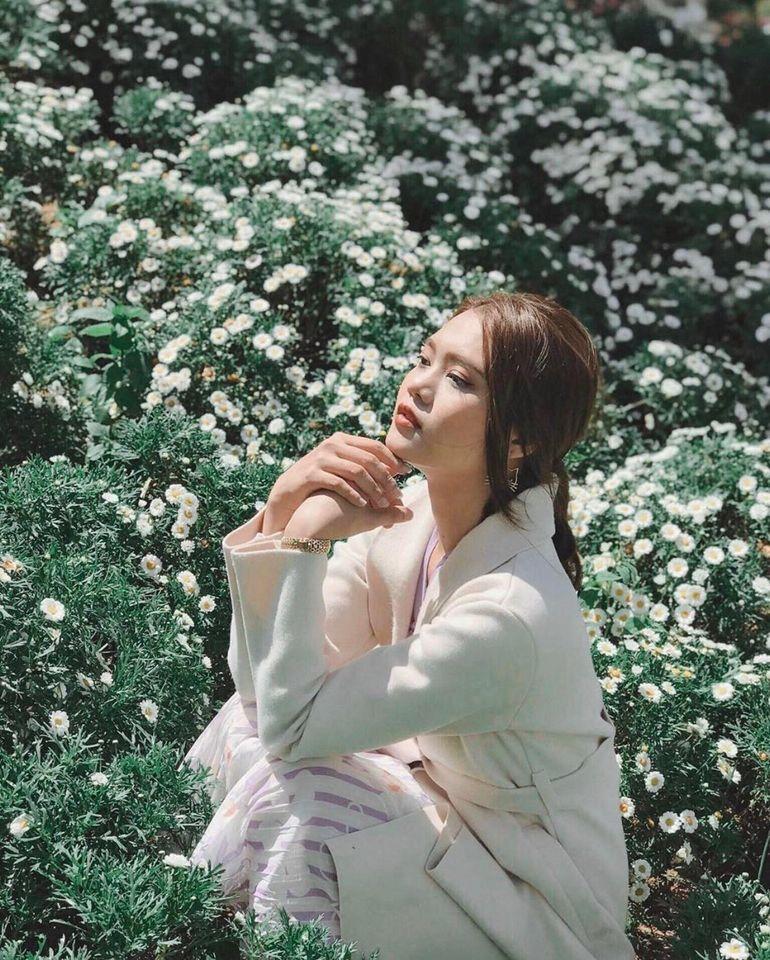 Cúc họa mi trắng tinh khôi ngàn hoa khoe sắc cũng là nơi bạn không nên bỏ qua nhé!