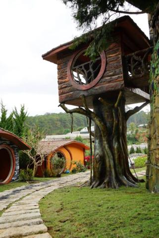 Những con đường lát đá lấp ló dưới những ngôi nhà trên cây là nơi bạn tản bộ ngắm nhin xung quanh.