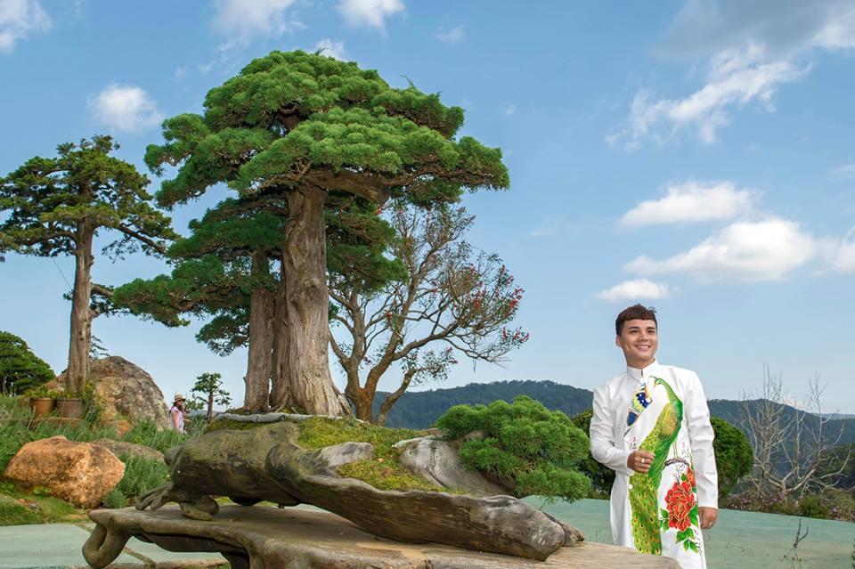 1 trong những tác phầm bonsai tiêu biểu tại Quê garden.
