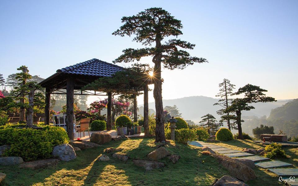 Một góc của khu vườn Bonsai đẹp xuất sắc tại Quê garden.