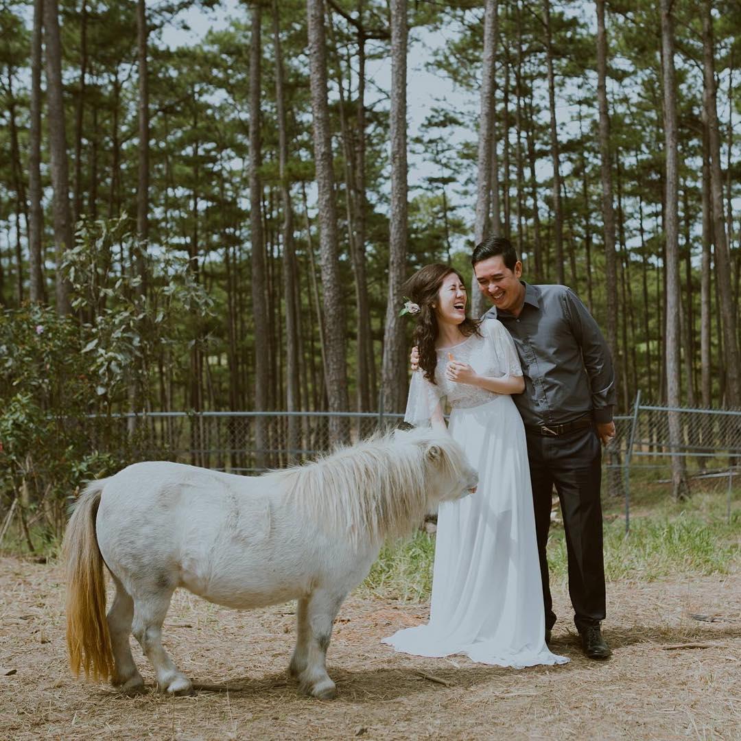 1 chú ngựa lùn Pony vô cùng đáng yêu tại sở thú Zoodoo Đà Lạt.