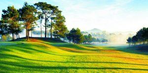 Sân golf Đà Lạt Palace Đồi Cù vào buổi sáng sớm với sương mù lãng vãng, sân cỏ Bent được trồng tỉ mẫn dưới những hàng thông cổ thụ xanh ngát.