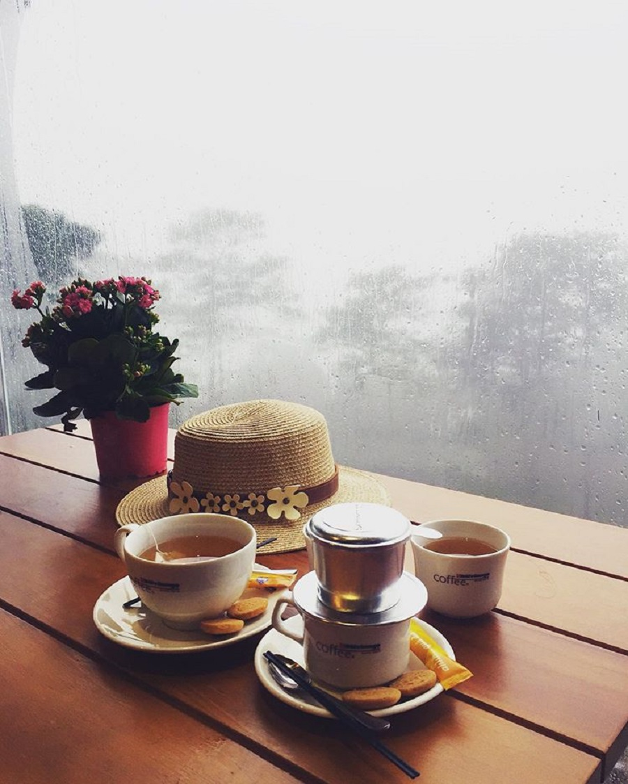 Là nơi bạn có thể thưởng thức cà phê và ngắm nhìn rừng thông qua cửa kính trong suốt.