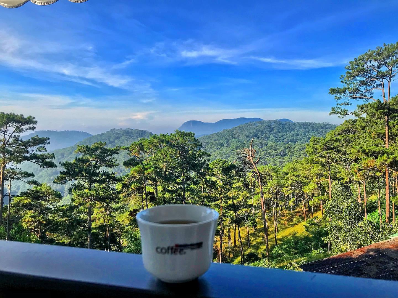 View rừng thông xanh ngát tại cà phê Bùi Văn Ngọ Đà Lạt.